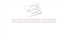 LSSBB CTQ Flowdown