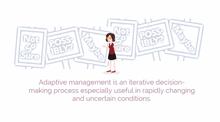 Adaptive Project Management