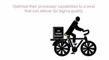 6sigma Roles & Responsibilities