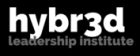 Hybrid Leadership Institute