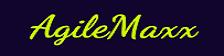AgileMaxx, LLC
