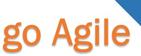 Go Agile LLC
